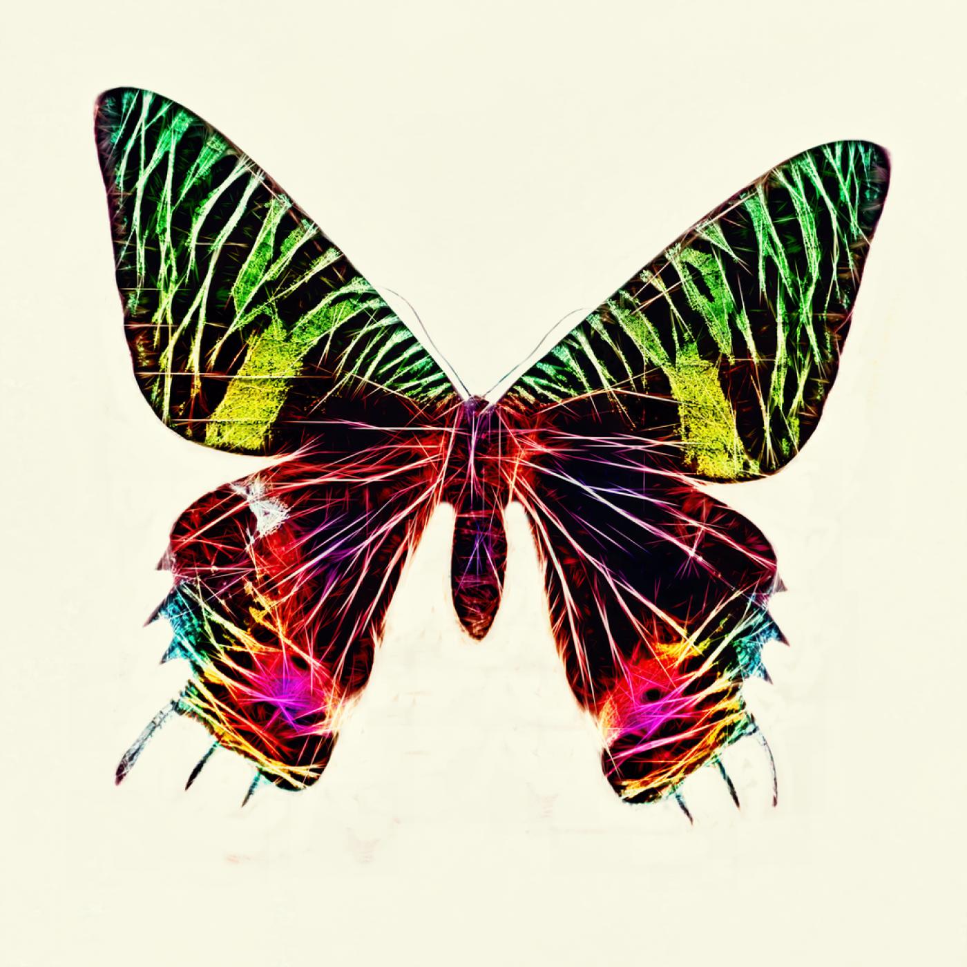 nature. electrified. - fauna